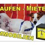 WERBUNG_IR_BALU_PHOTO_01